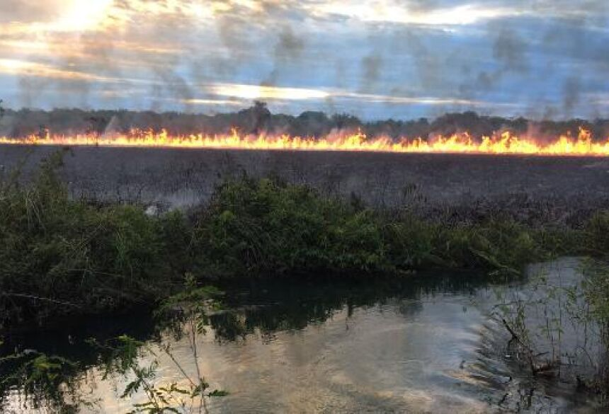 Fotos: BONITO INFORMA / WHATSAPP - Raios provocam incêndio em área de banhado e bombeiro tentam controlar em BONITO