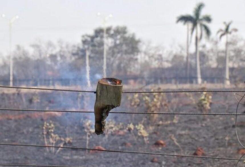 Fazenda Malibu, na BR-163, teve incêndio de doze horas. (Foto: Henrique Kawaminami)