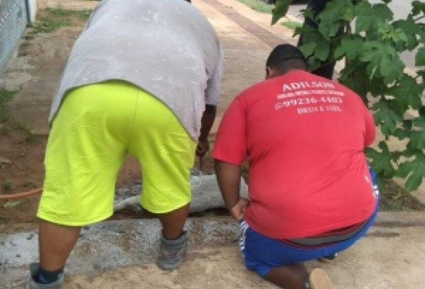 Adilson e filho tentaram amenizar sofrimento de cachorro jogando água (Foto: Clayton Neves)