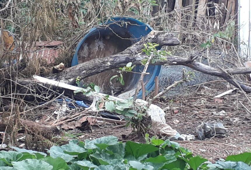 Lixo acumula água nos terrenos baldios, favorecendo a procriação do mosquito. Foto: Divulgação