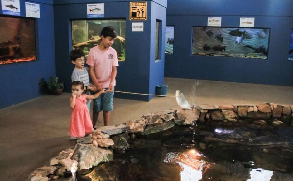 Atrativo turístico faz campanha em prol de famílias afetadas pela pandemia em Bonito