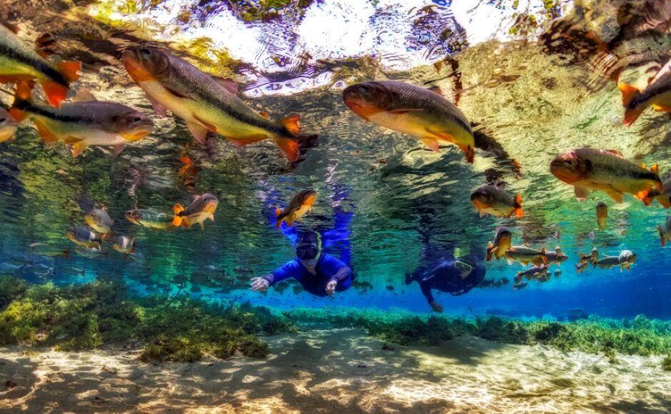 BONITO e Jardim com passeios de ecoturismo em MS finalistas em Prêmio Internacional